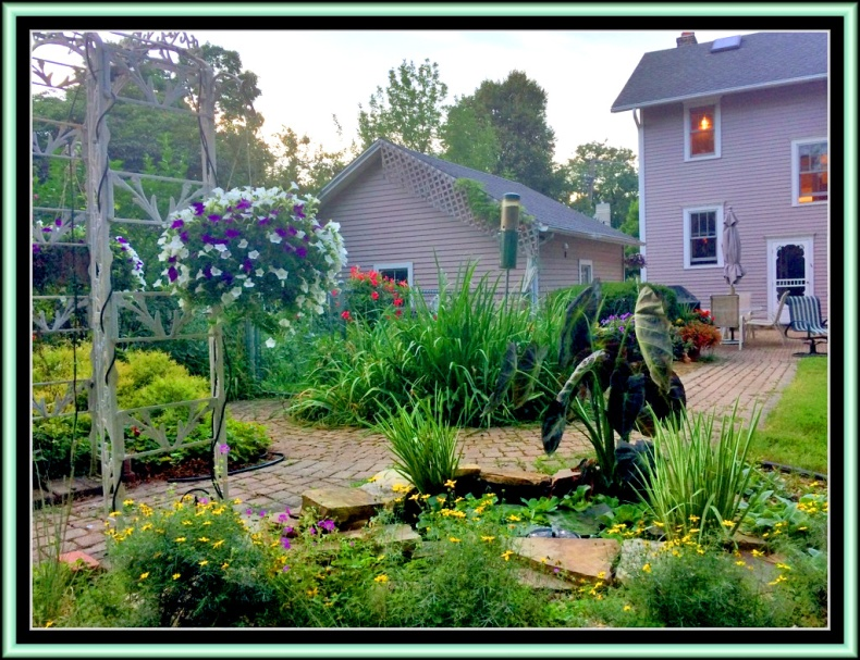 Mike's Garden 2015 JW